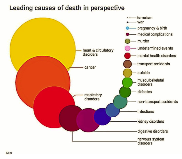 Leading Causes of Death_June 5