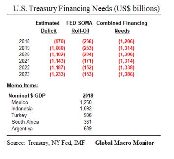Treasury_Financing Needs